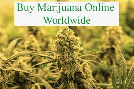 Online Dispensary Shipping Worldwide PAYPAL